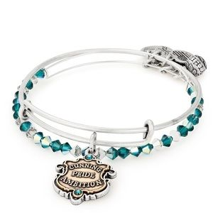 🆕 Alex & Ani Harry Potter Slytherin Bracelet Set
